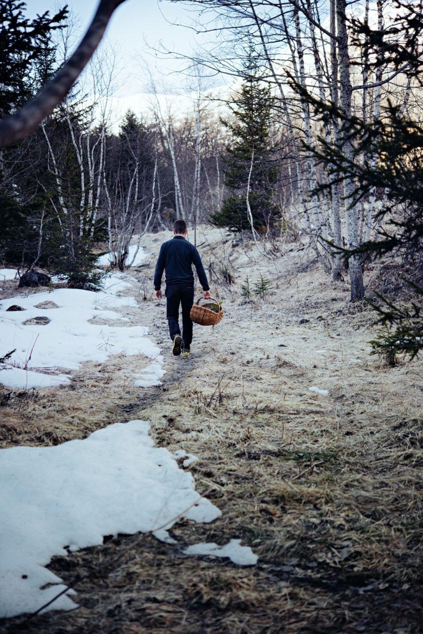 Jean Sulpice cueille des herbes en montagne en hiver dans la neige